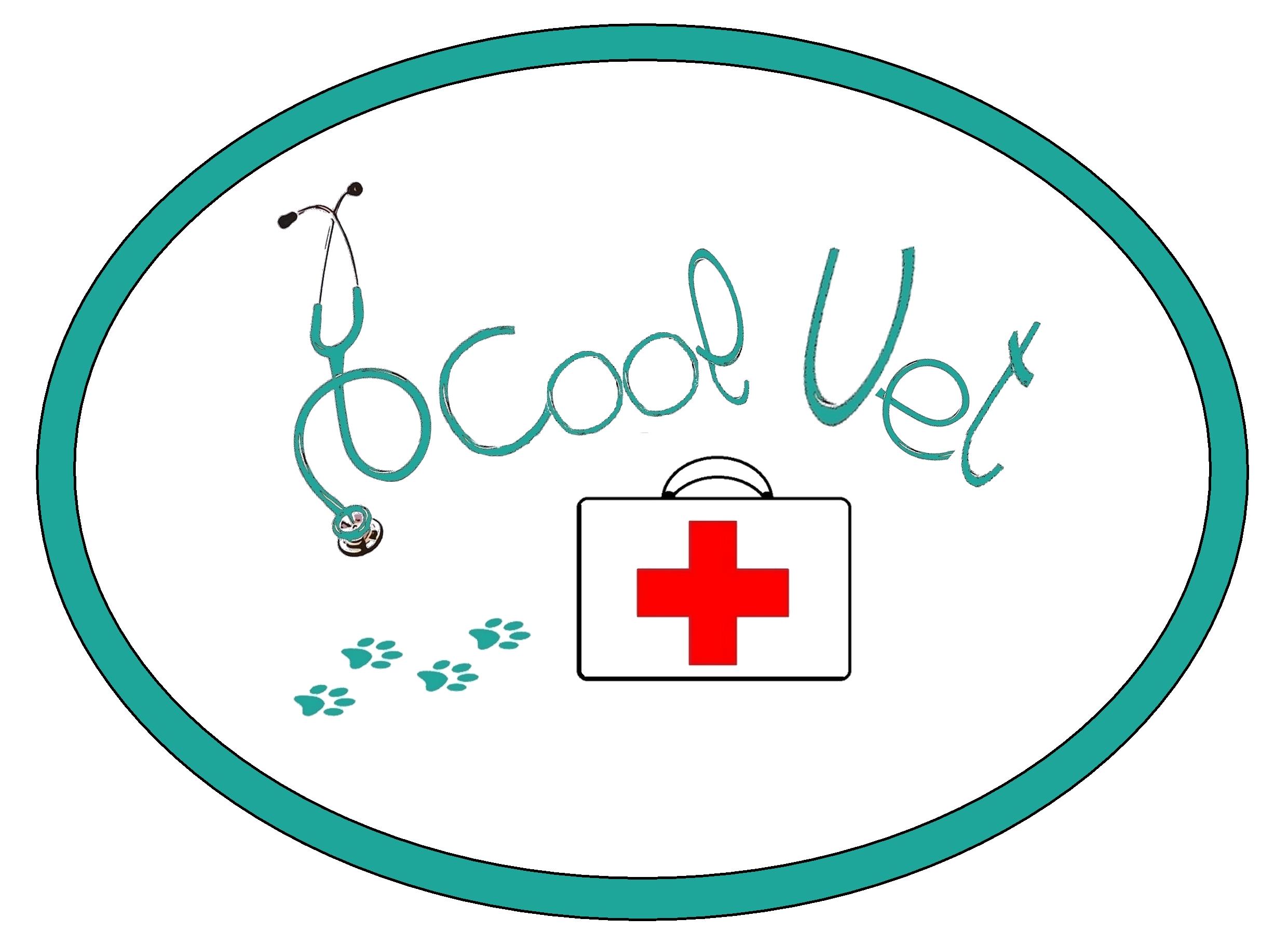 DCool Conseil vétérinaire et comportemental